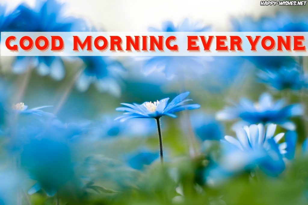 Good Morning Everyone Beautiful Flower Images