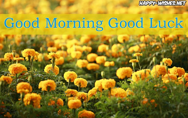 Good Morning Good Luck Images with garland flower images