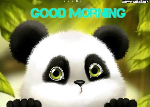 Good Morning Sunshine Panda images