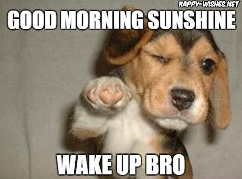 Good Morning Sunshineto you Bro