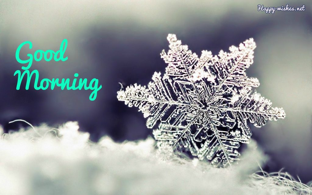 Good Morning Winter images with Snowy Backgrounds