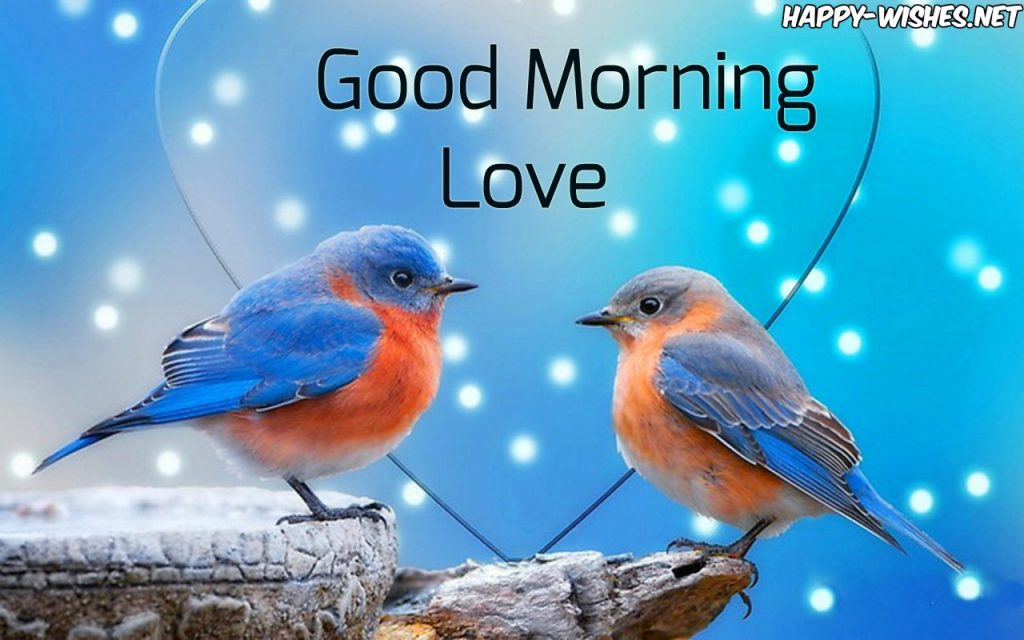 Good Morning Wishes With lOVE BirdS Images