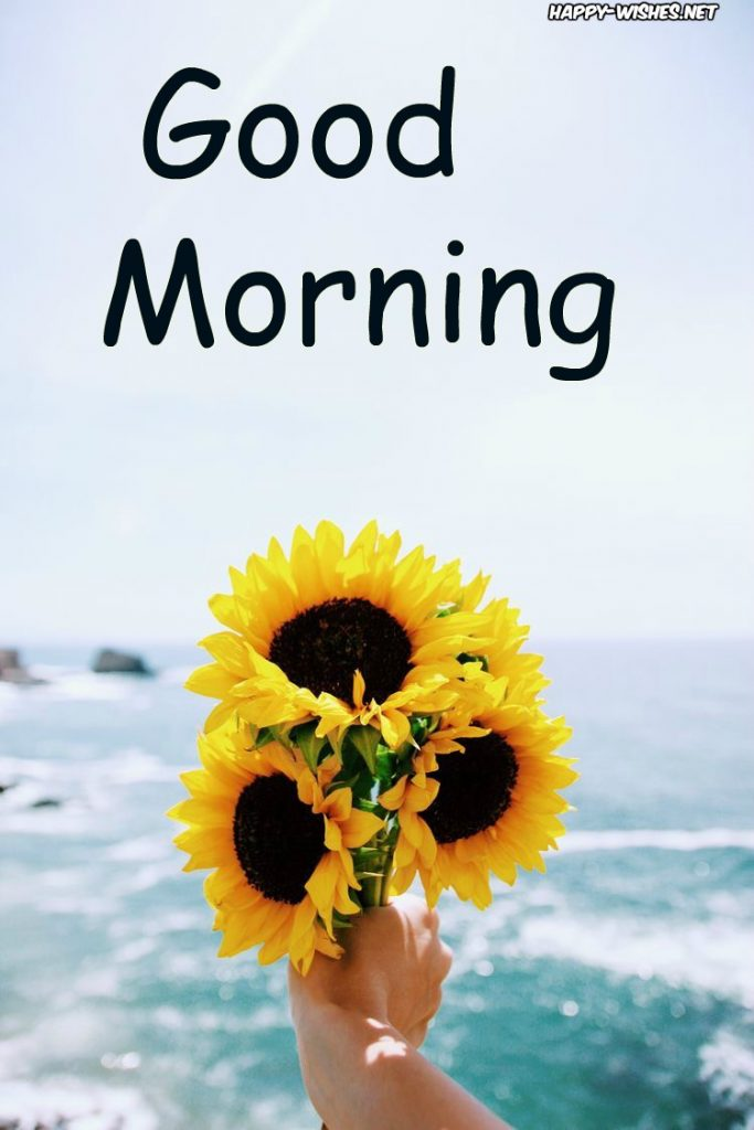 Good Morning Wishes with Sunflower in Background