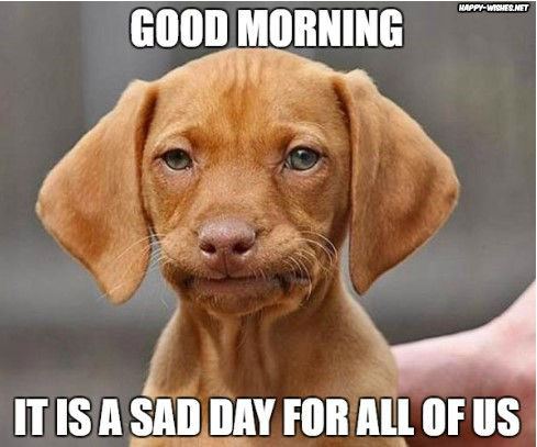 Good Morning meme for him with sad dog image