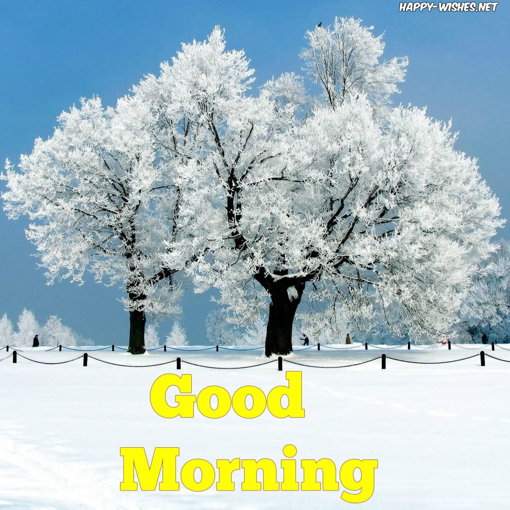 Good Morning wishes with snow on the tree images