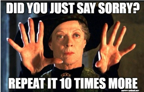 Harry potter memes Professor minerva macgonell memes
