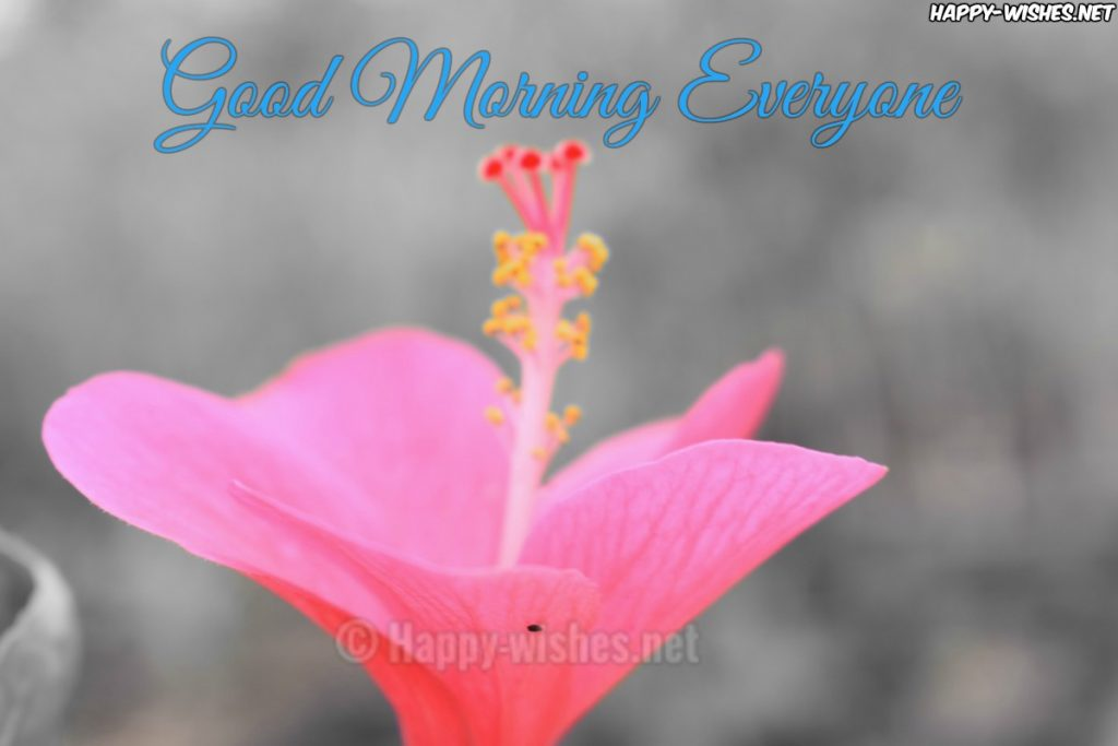 35 Good Morning Wishes For Everyone