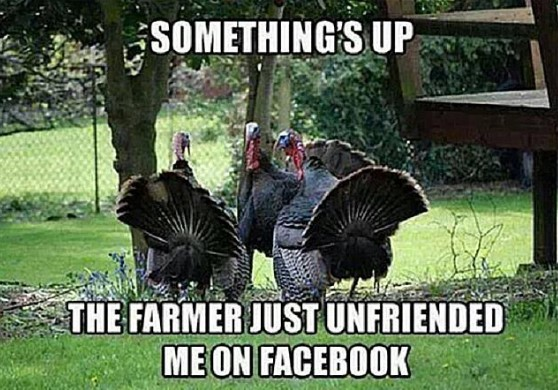 Thanksgiving famous turkey meme