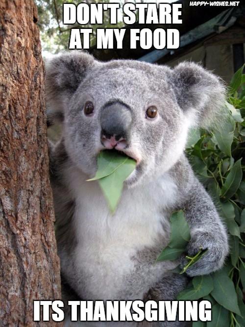 Thanksgiving staring at food meme