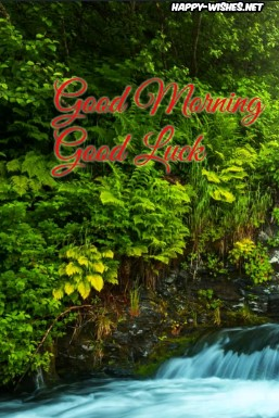 good morning good luck images