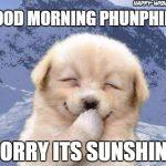 shy dog Good Morning Sunshine Images