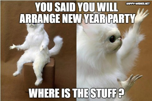 Angry cat on new year memes