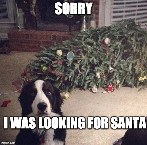 i was looking for santa