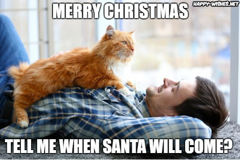 when santa willl come funny cat christmas memes