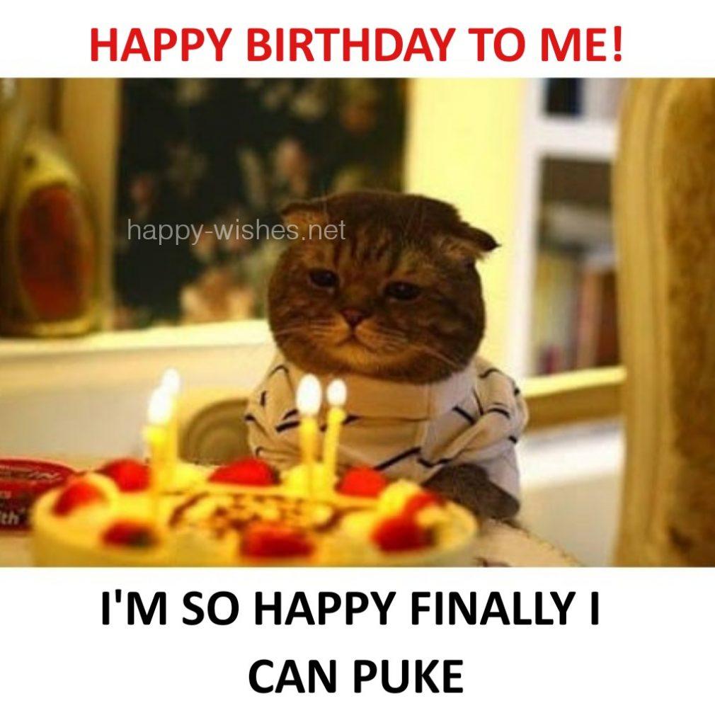 Happy birthday to me meme cat